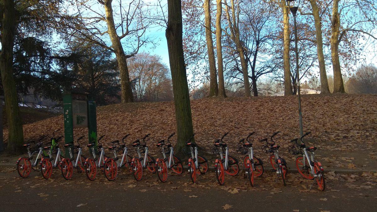 Una batteria di bici Mobike al Parco della Pellerina